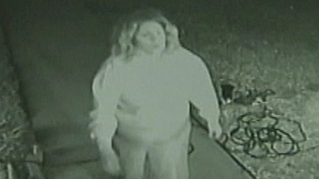 'Grinch' stealing Christmas decorations in Texas