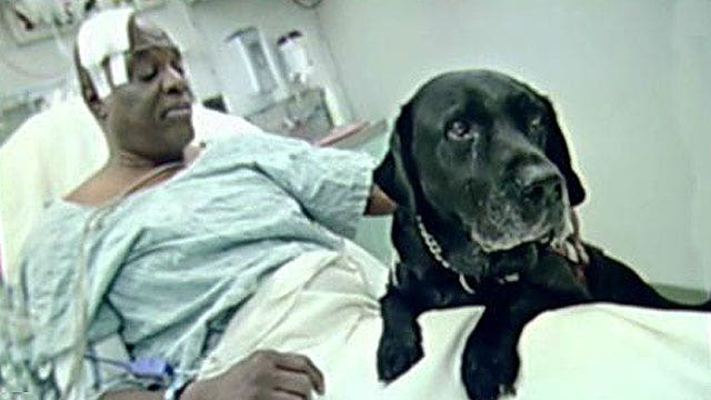 Strangers donate money to let blind man keep guide dog