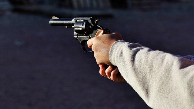 Rove, Trippi weigh in on gun control