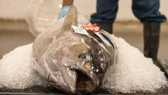 Tuna sold in 16 states recalled after illnesses reported