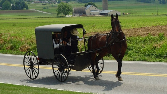 Amish businessman ordered to pay $5.2M in scam targeting his own community