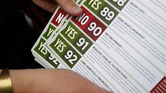 Americans Vote on Pot, Higher Pay – Main Street's Mixed