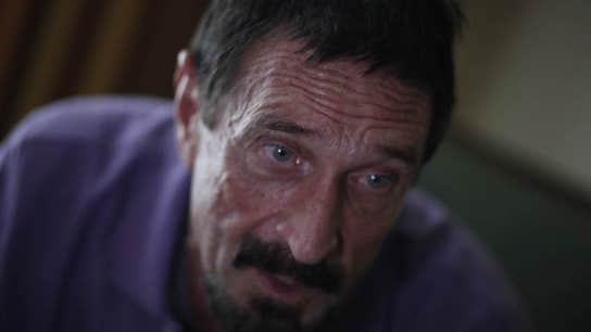John McAfee to run for president in 2020 on cryptocurrency platform