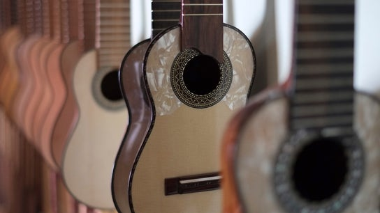 Business Opportunities in the Suddenly-Sexy Ukulele