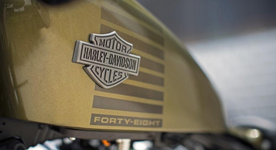 Harley Davidson logo 2 FBN