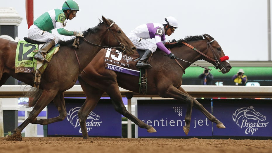 Nyquist Breeders Cup horse racing FBN