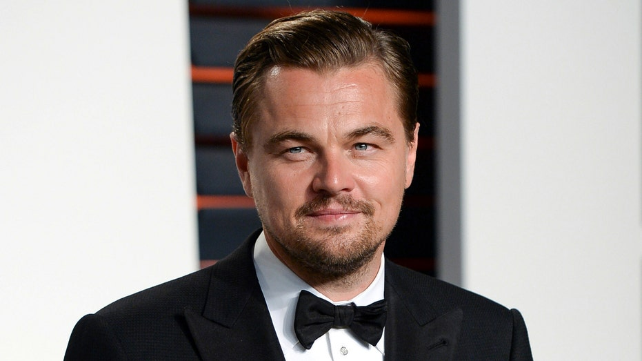 Leonardo DiCaprio's Nonprofit Is Donating $3 Million to Combat Australian Bushfires