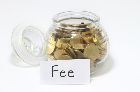 what are ira custodial fees