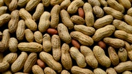 Peanuts and farmers trying to avoid striking out with baseball coronavirus bans