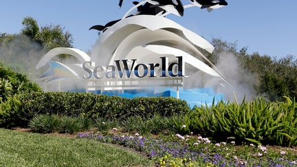 SeaWorld San Diego is testing drones as an environmental fireworks replacement