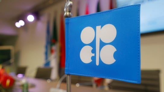 OPEC, partners discuss oil supply cut: Report