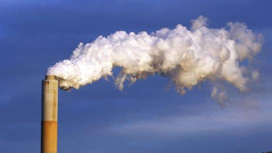 Economists, former Fed leaders unite over carbon tax