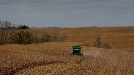 US farmers on edge over China-US trade war