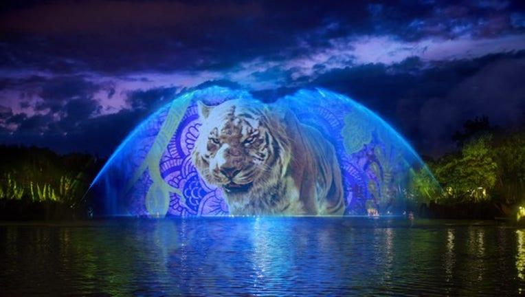 Disney World Gives Animal Kingdom the Night Off