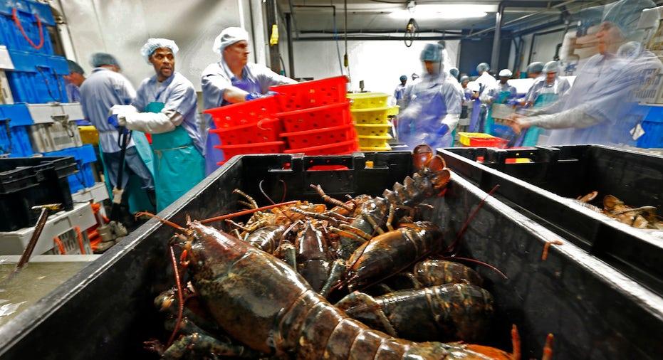 Lobsters, seafood FBN