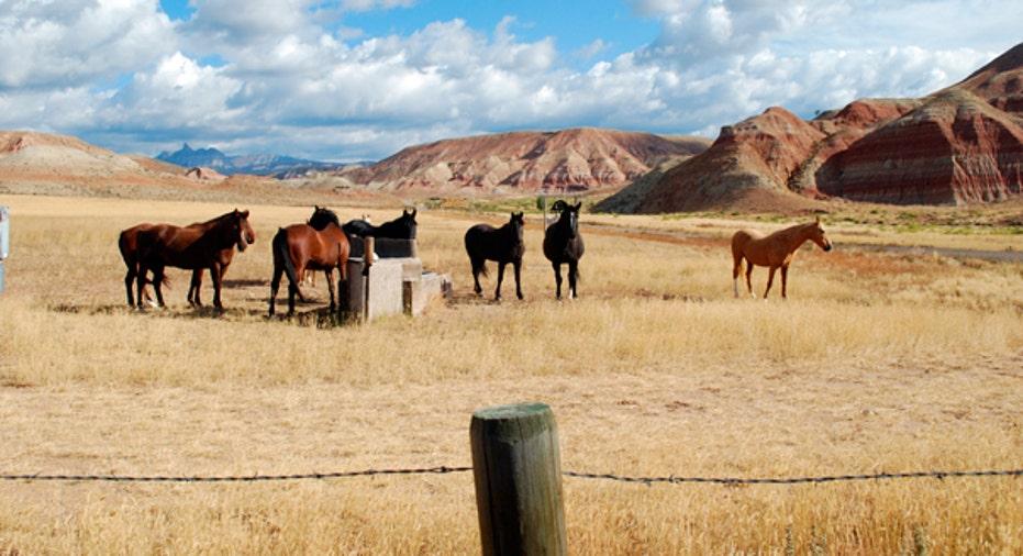 1. Wyoming