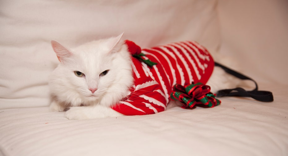 Meowwy Christmas and Happy New Year!