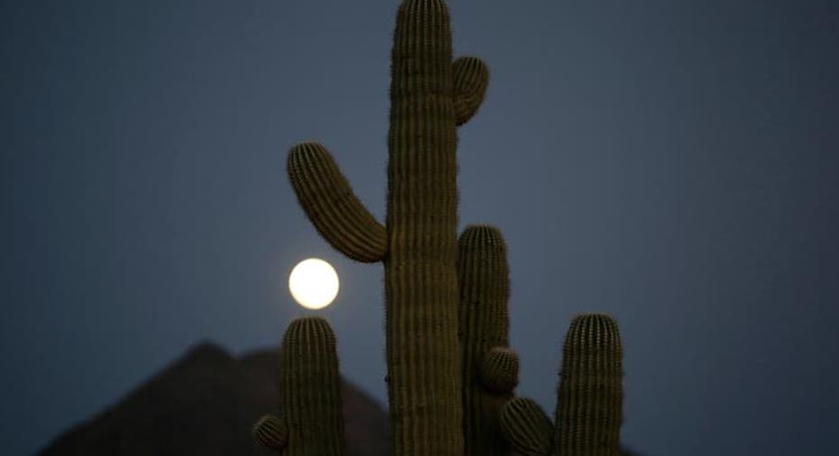 Full Moon, cactus, Arizona