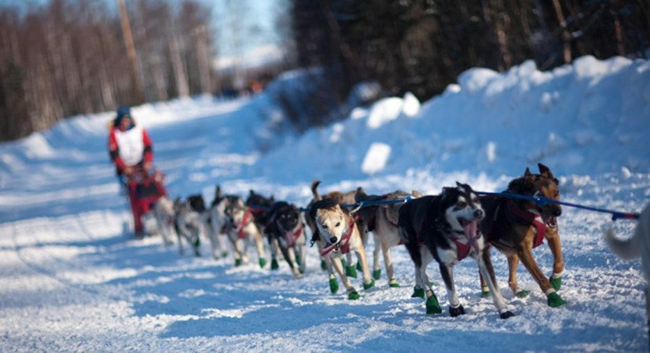 Dogsled in Alaska