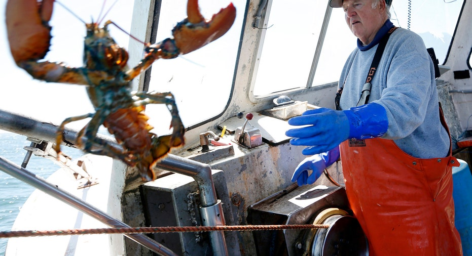 Lobster Tossed From Boat AP FBN