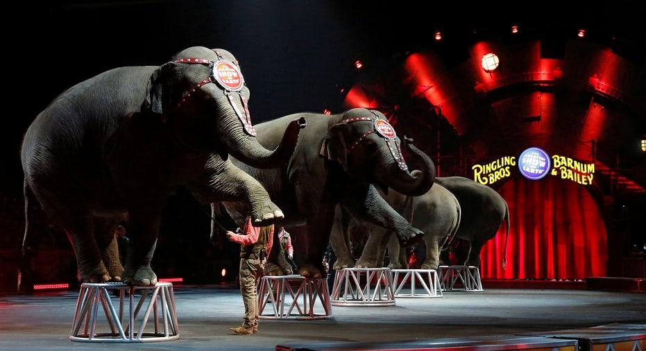 USA-CIRCUS/ELEPHANTS