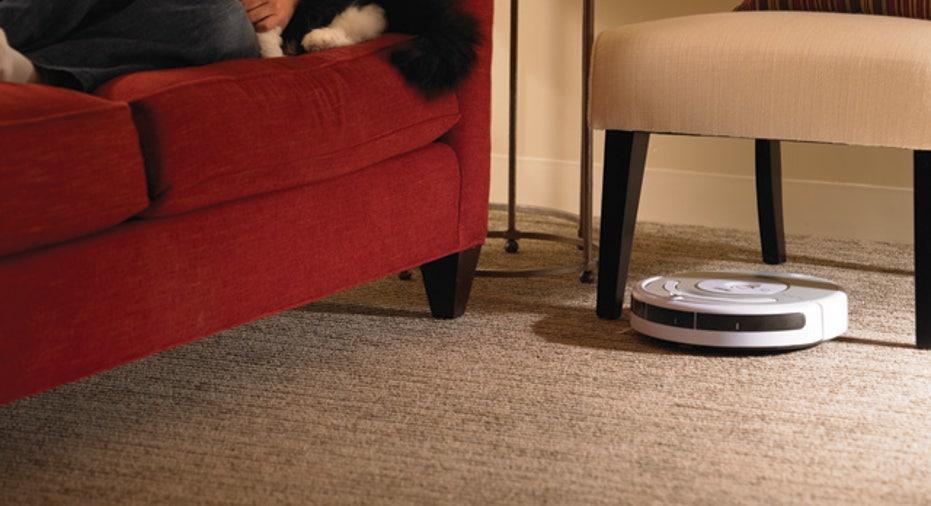 iRobot Roomba Pet 532 in Living Room