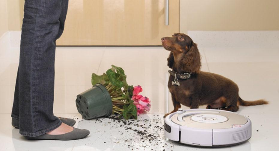 iRobot Roomba Pet 532 in the Kitchen