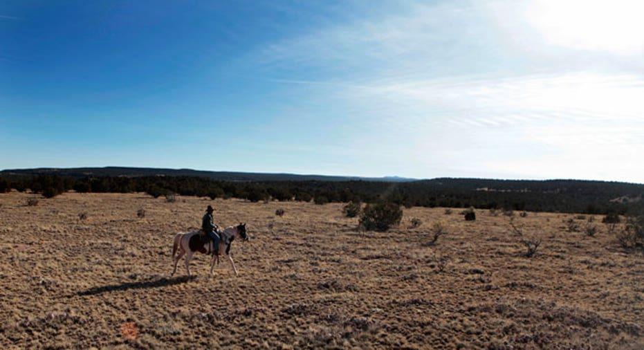 New Mexico, cowboy