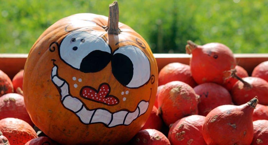 halloween, pumpkin picking, pumpkins
