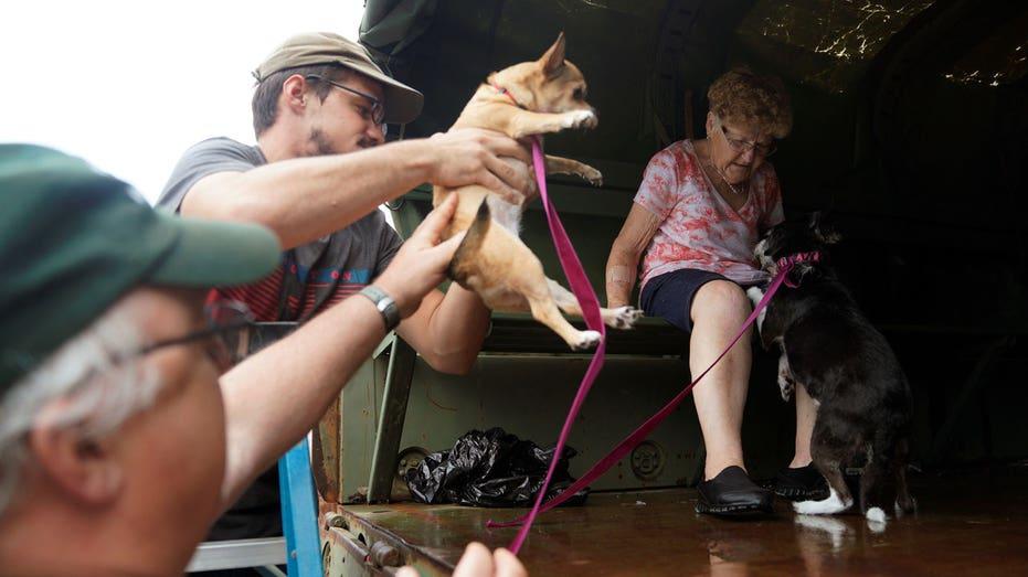 Pet Evacs Reuters Rick Wilking