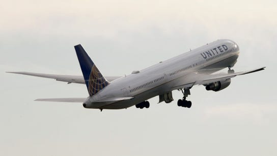 US airlines pressured by lawmakers to improve travel for pets after United incidents