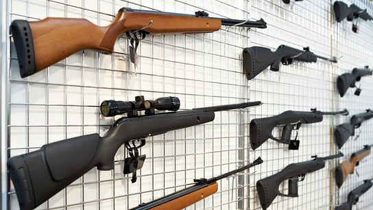Gun background checks hit record, stocks in focus