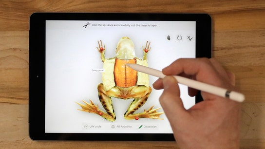 Apple's new iPad: 5 things to know