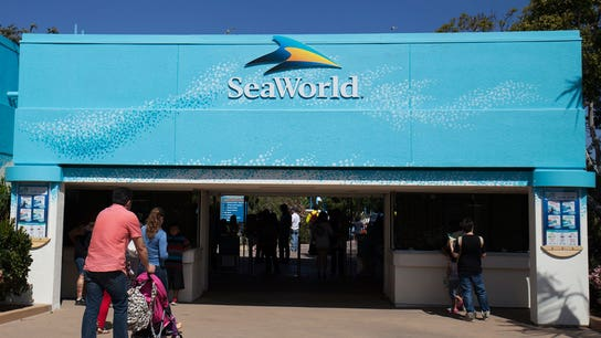 Seaworld CEO beaches himself after 7 months