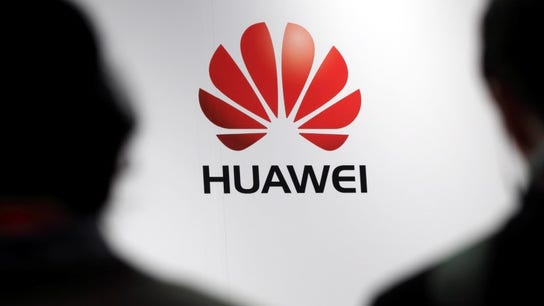 Huawei CFO arrest a 'despicable rogue action' by US: Chinese media