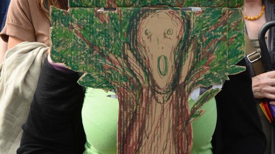 Polish protesters demand halt to logging in primeval forest
