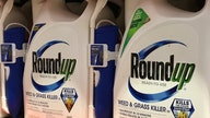 Bayer takes legal battle over Roundup cancer claims to US Supreme Court