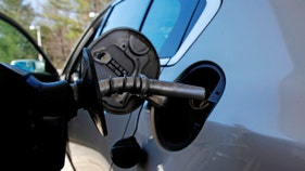 Average US price of gas remains steady