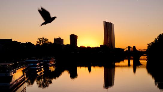 The Latest: European Central Bank sees tariffs as key risk