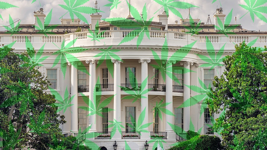 Image result for White House to unveil federal cannabis reform 'very soon,' says GOP lawmaker