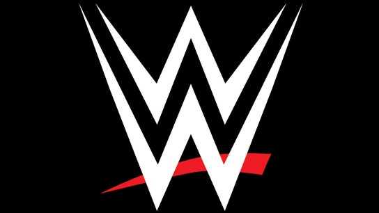 WWE's Saudi wrestling events should go on: John Layfield