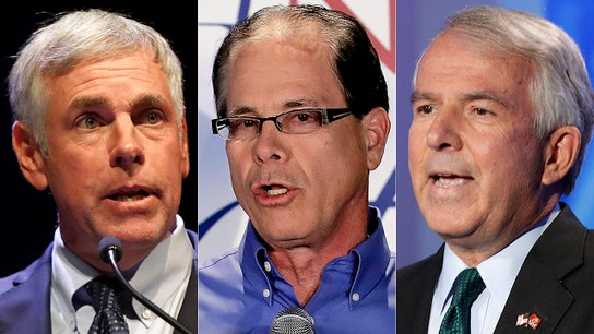 Midterm elections 2018: Business leaders and executives running for office