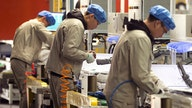 China's manufacturing rebounds as coronavirus controls ease
