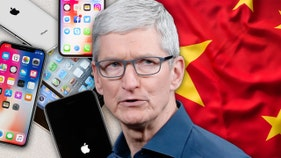 Apple's China business might have actually benefited from trade war
