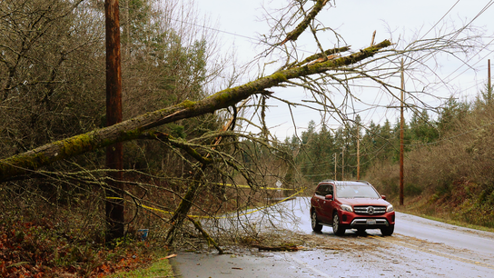 Crews work to restore power after Pacific Northwest storm
