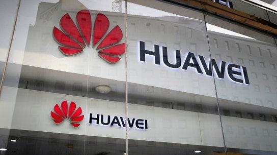 France won't ban Huawei, business ambassador says