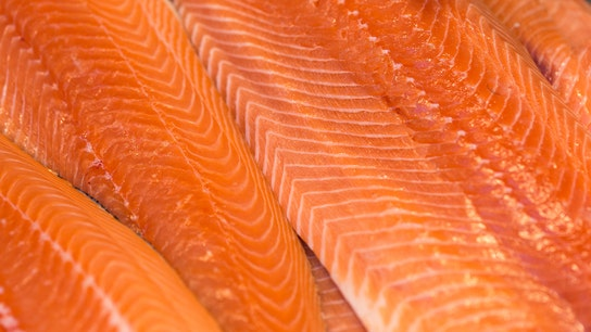 FDA lifts ban on genetically modified salmon