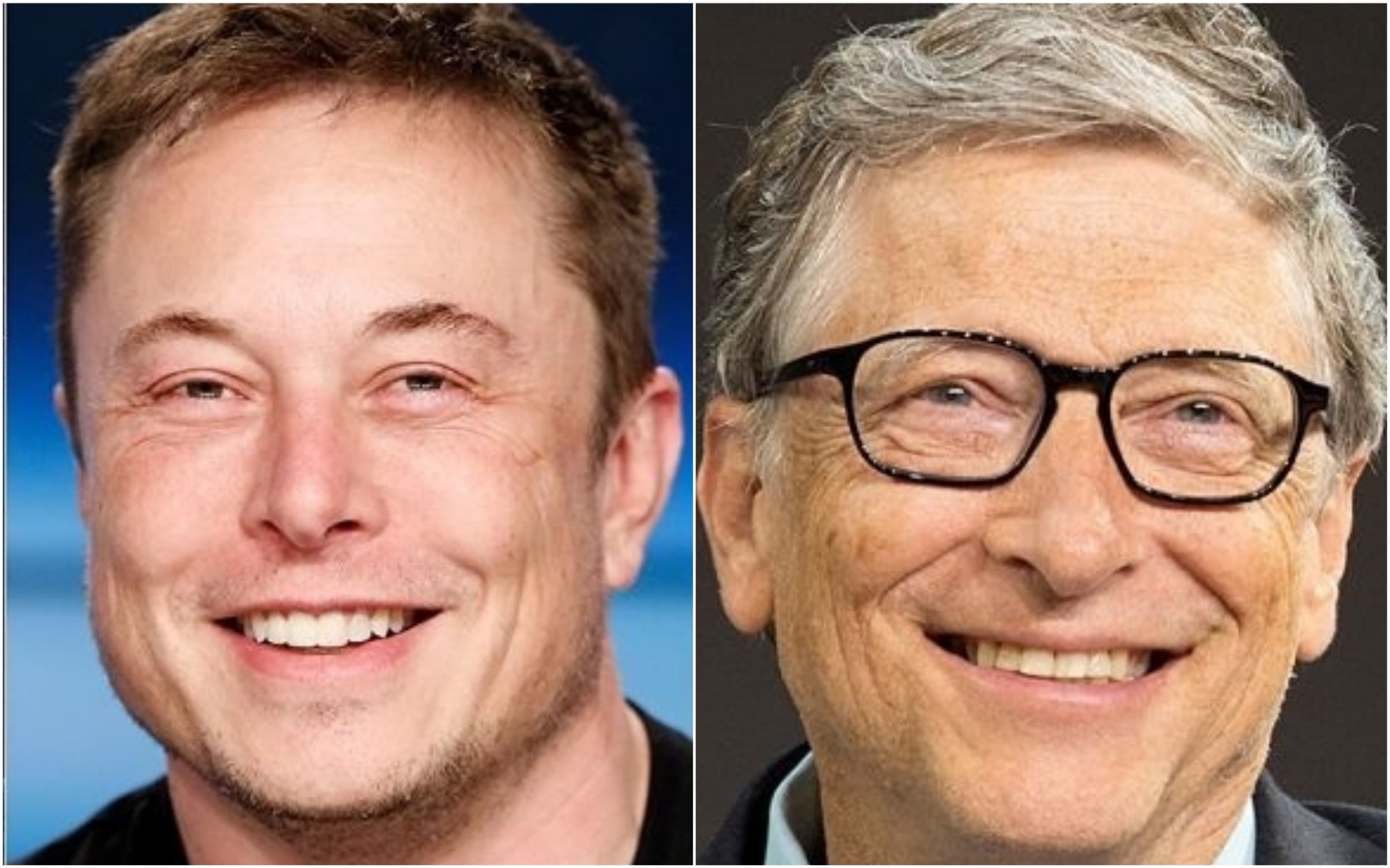 Elon Musk, Bill Gates, others took a personality test and