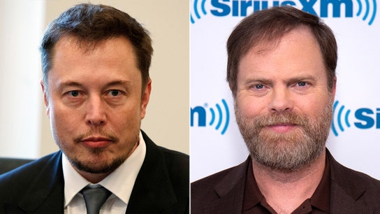 Elon Musk blasted by 'The Office' star Rainn Wilson for not giving credit for 'quiet' leaf blower idea