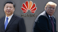 74% of Americans think Huawei should be removed from U.S., poll shows